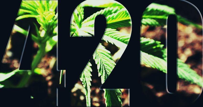 Origins: Story Behind '420' The Pot-Code