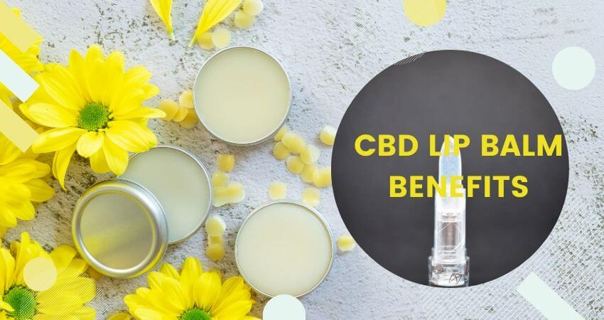 Top CBD Lip Balm Benefits that will change your life