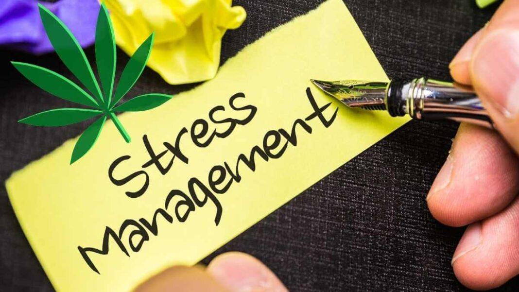 Marijuana for stress management