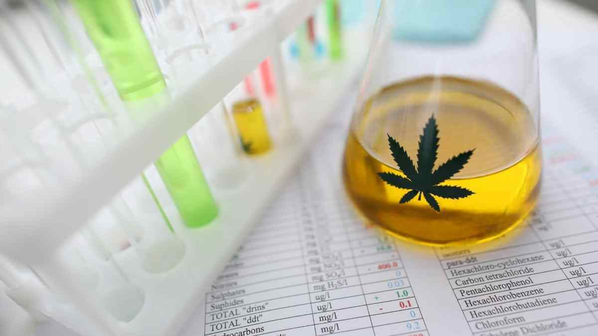 How to read and understand CBD lab tests: Ultimate Guide