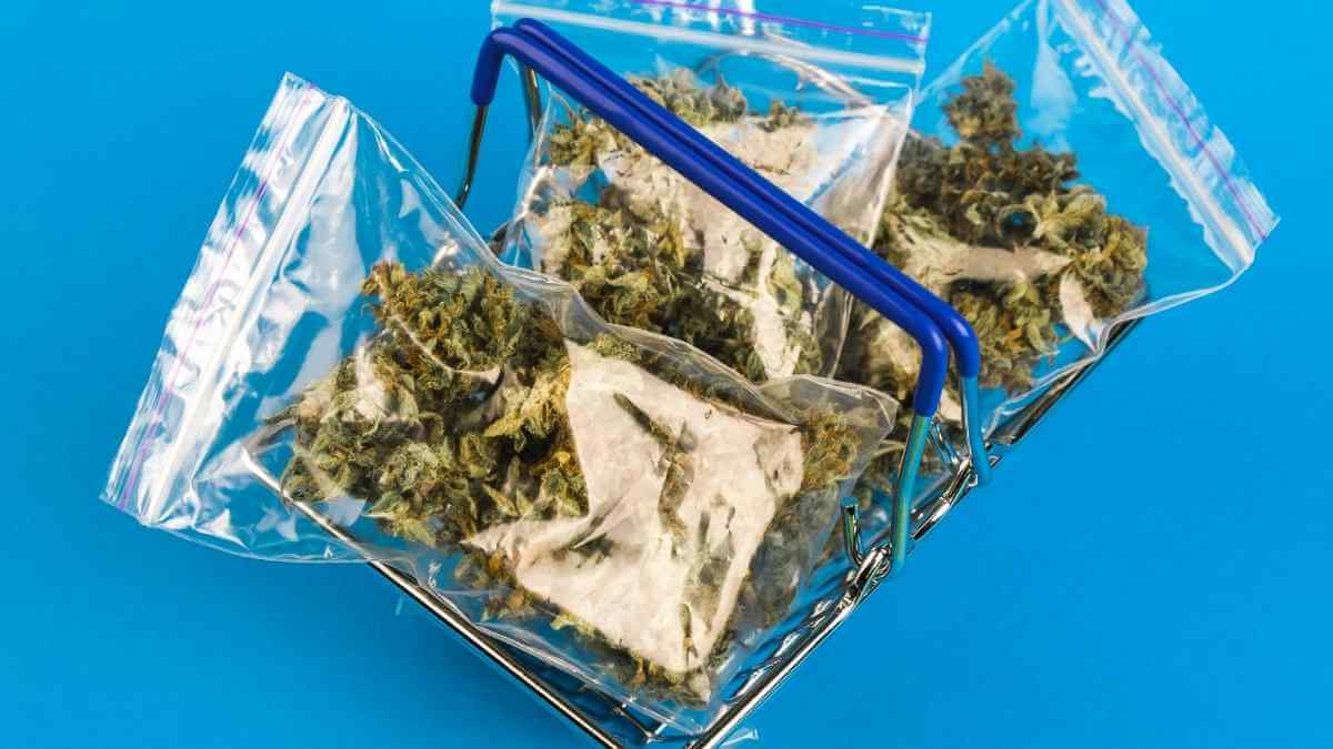 Strong cannabis Packaging: A game-changer for companies and brands