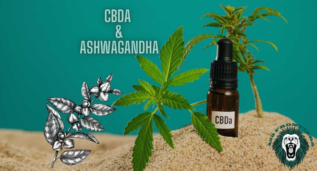 CBDA Ashwagandha gummies for health and wellness: