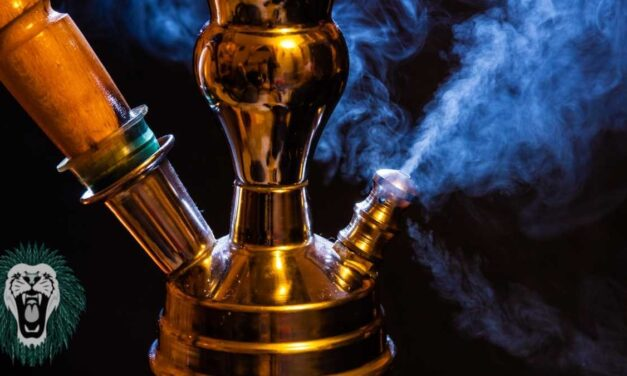 Choose Water Pipes if You Want to Try Smoking-Here's Why?